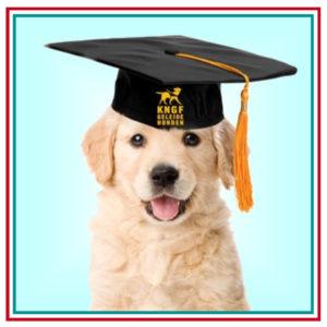 FB - vierkant pup diploma